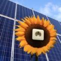 Kürzung der Photovoltaik-Förderung - Renditen für Hausbesitzer sinken stark