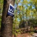 Wandern durch Heidemoor und Hohe Mark